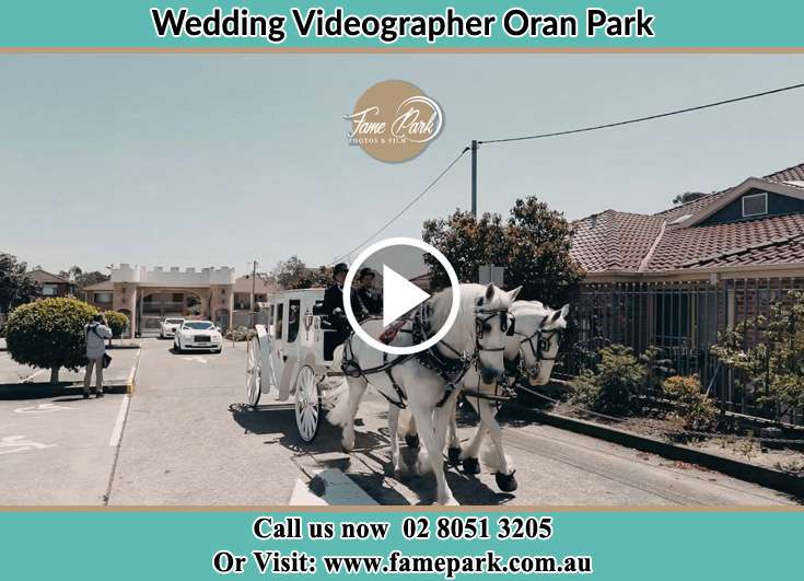 The Wedding Carriage Oran Park NSW 2570
